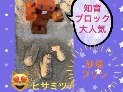 知育ブロック大人気☆