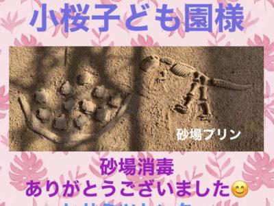 砂場消毒☆子桜子ども園様☆