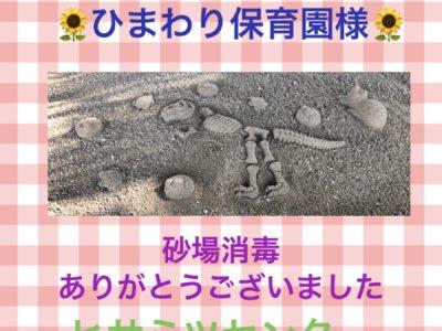 砂場消毒♥ひまわり保育園様♥